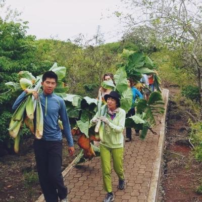 エクアドルでガラパゴス環境保護 石井紀代美